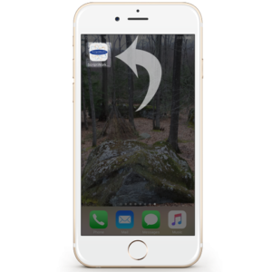 Mobile Bookmark icon on an iPhone